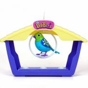 Поющая птичка с домиком